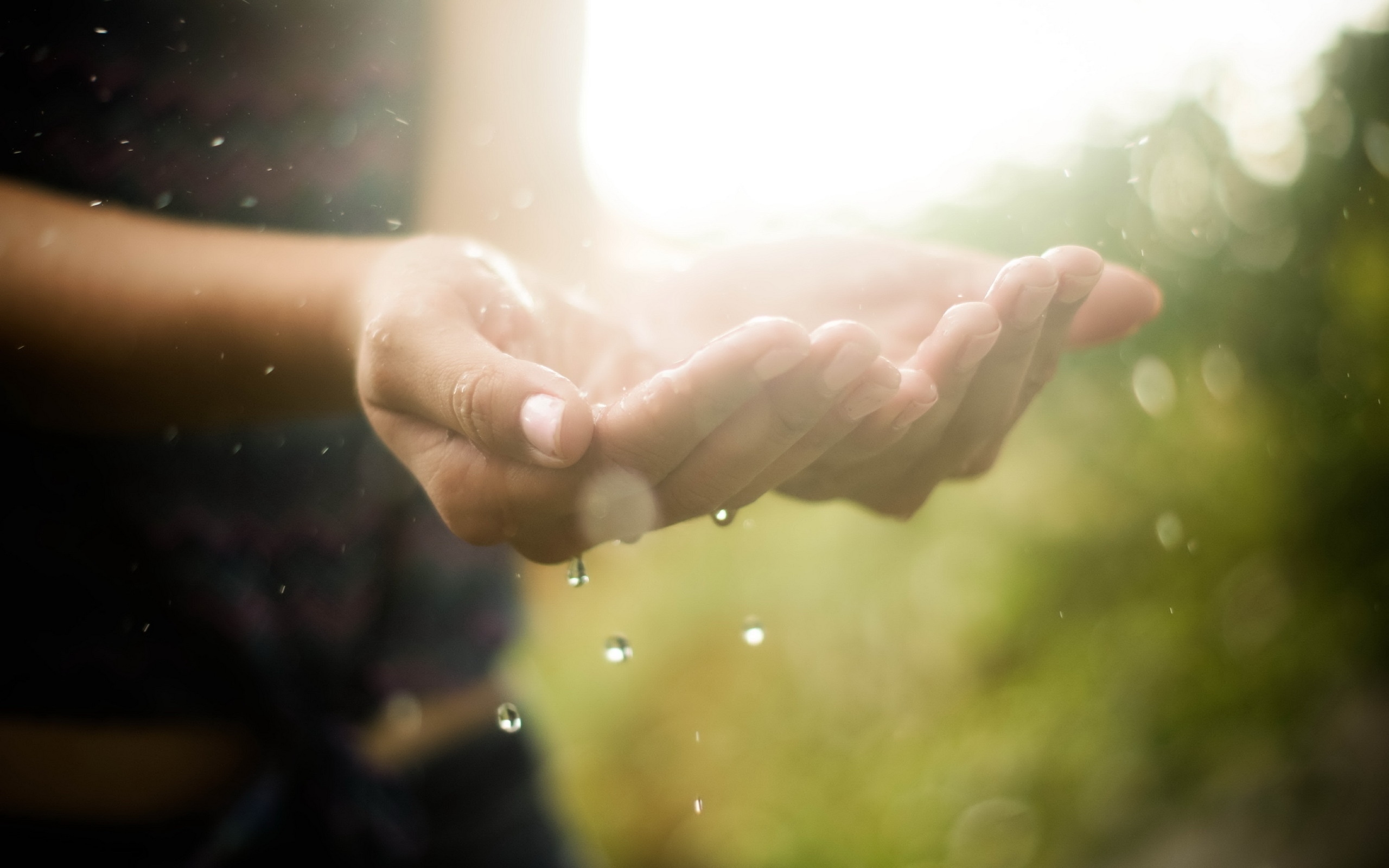 hands_drops_water_macro_light_81004_2560x1600